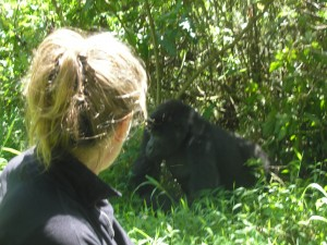 Askari_Africa_Rwanda_Gorillas