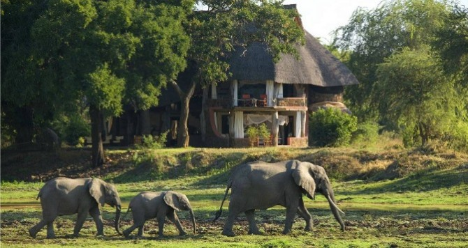 Photo courtesy Robin Pope Safaris Luangwa