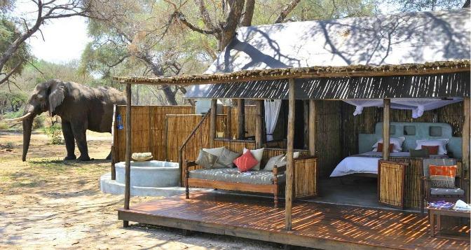 Photo courtesy Old Mondoro Camp – Zambia