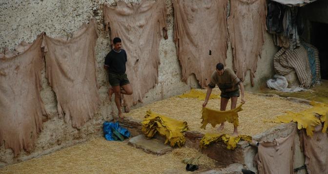 AskariTravel_Morocco_Blog7_DSC_0678