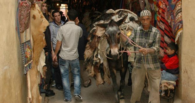 AskariTravel_Morocco_Fes_DSC_0682